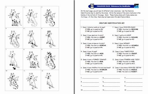 Dichotomous Key Worksheet Pdf New Here S An Imaginary Creature Dichotomous Key Activity