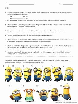 Dichotomous Key Worksheet Pdf Unique Dichotomous Key Worksheet with Minions by