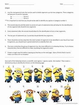 Dichotomous Key Worksheet Pdf Unique Dichotomous Key Worksheet with Minions by