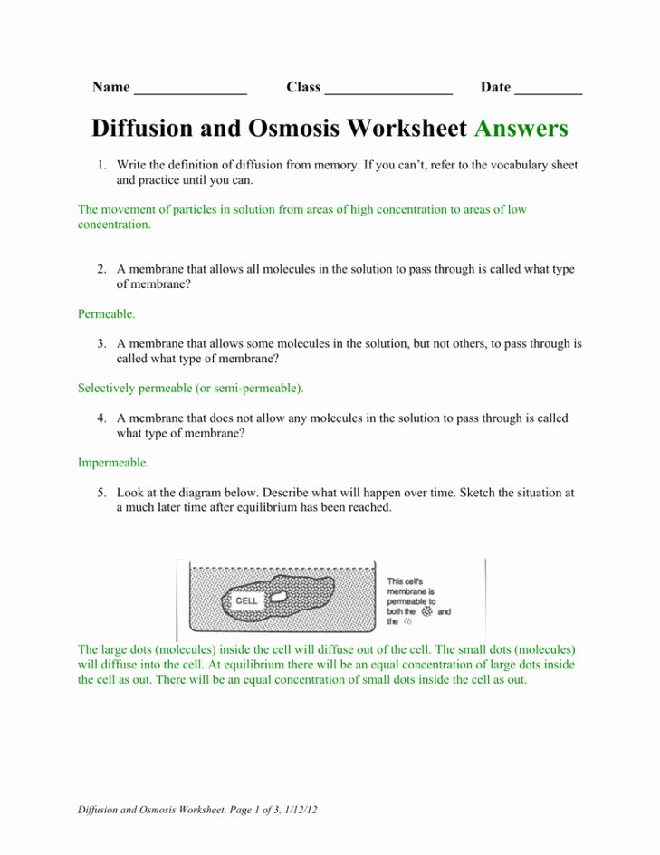 Diffusion and Osmosis Worksheet Answers Awesome Diffusion and Osmosis Worksheet Answers