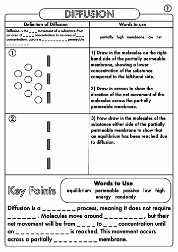 Diffusion and Osmosis Worksheet Answers Awesome Gcse Diffusion Osmosis and Active Transport Worksheets by