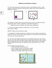 Diffusion and Osmosis Worksheet Answers Unique Diffusion Wksht Pdf Diffusion Osmosis Worksheet 1 Use