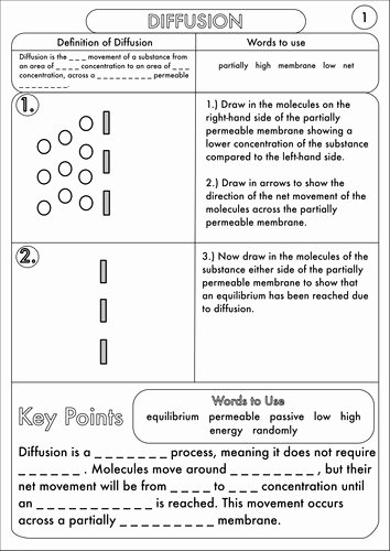Diffusion and Osmosis Worksheet Elegant Diffusion Worksheet