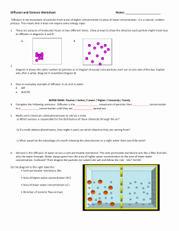 Diffusion and Osmosis Worksheet Inspirational Diffusion and Osmosis Worksheet Answers