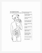 Digestive System Worksheet Pdf Inspirational Outline Template – 216 Free Word Excel Pdf format