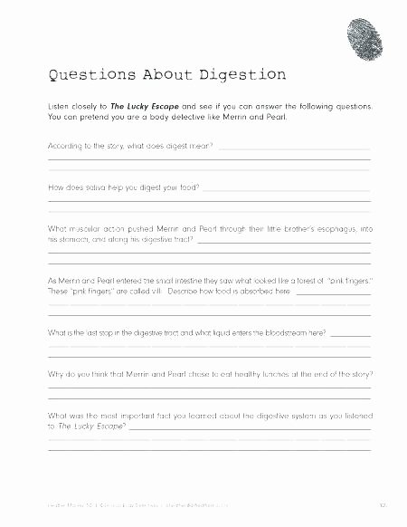 Digestive System Worksheet Pdf New Cooking Worksheets for Middle School – Kinchen