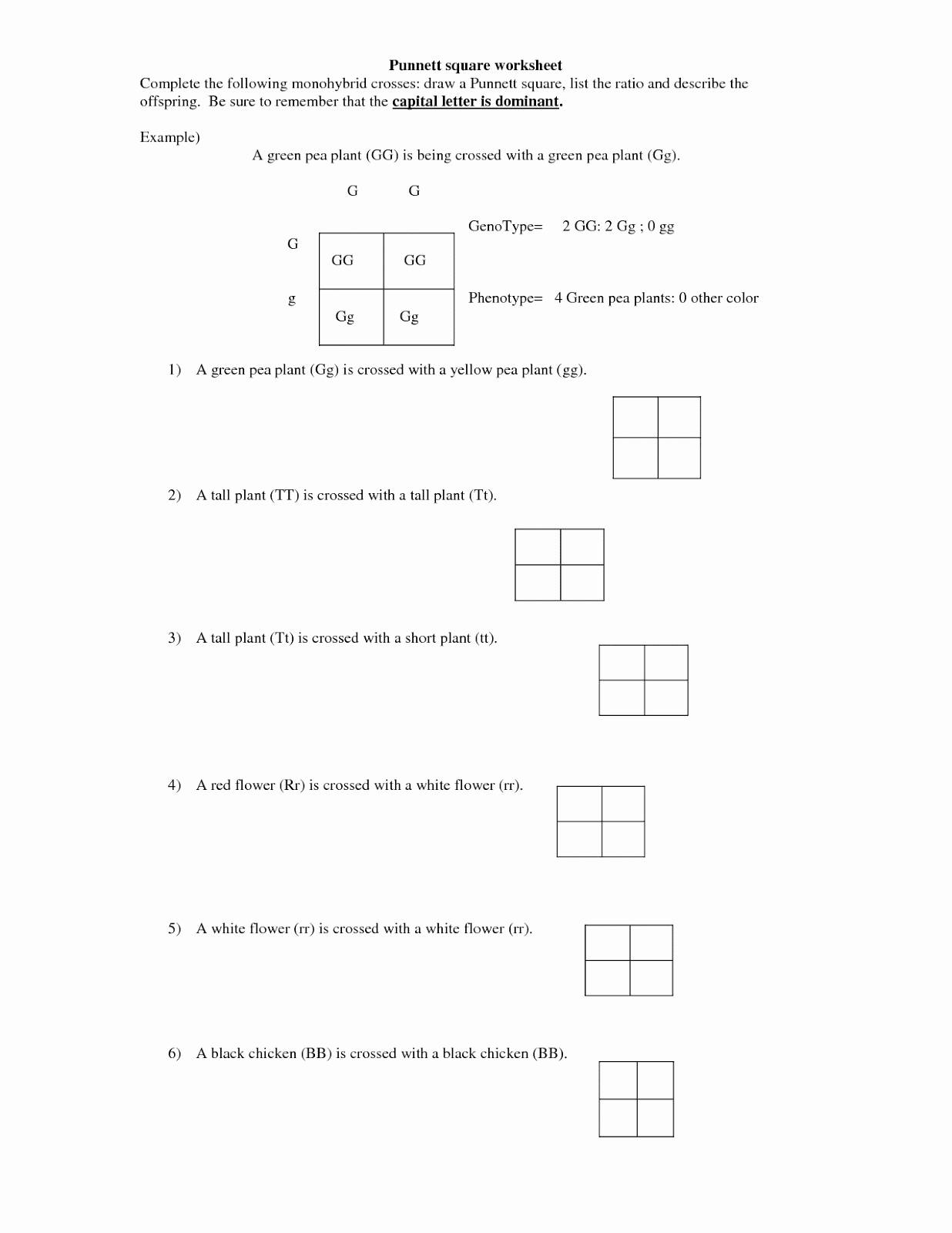 Dihybrid Cross Worksheet Answers Awesome Monohybrid Cross Worksheet