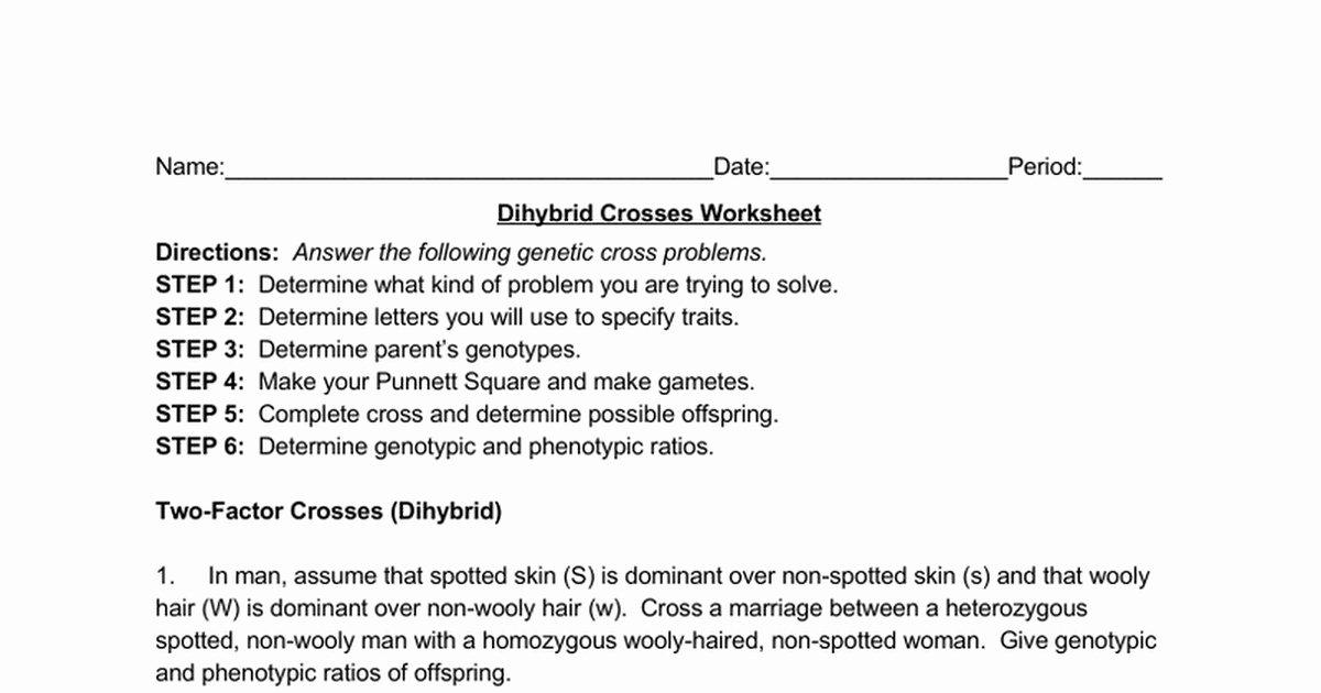 Dihybrid Cross Worksheet Answers Beautiful Dihybrid Cross Worksheet Answers
