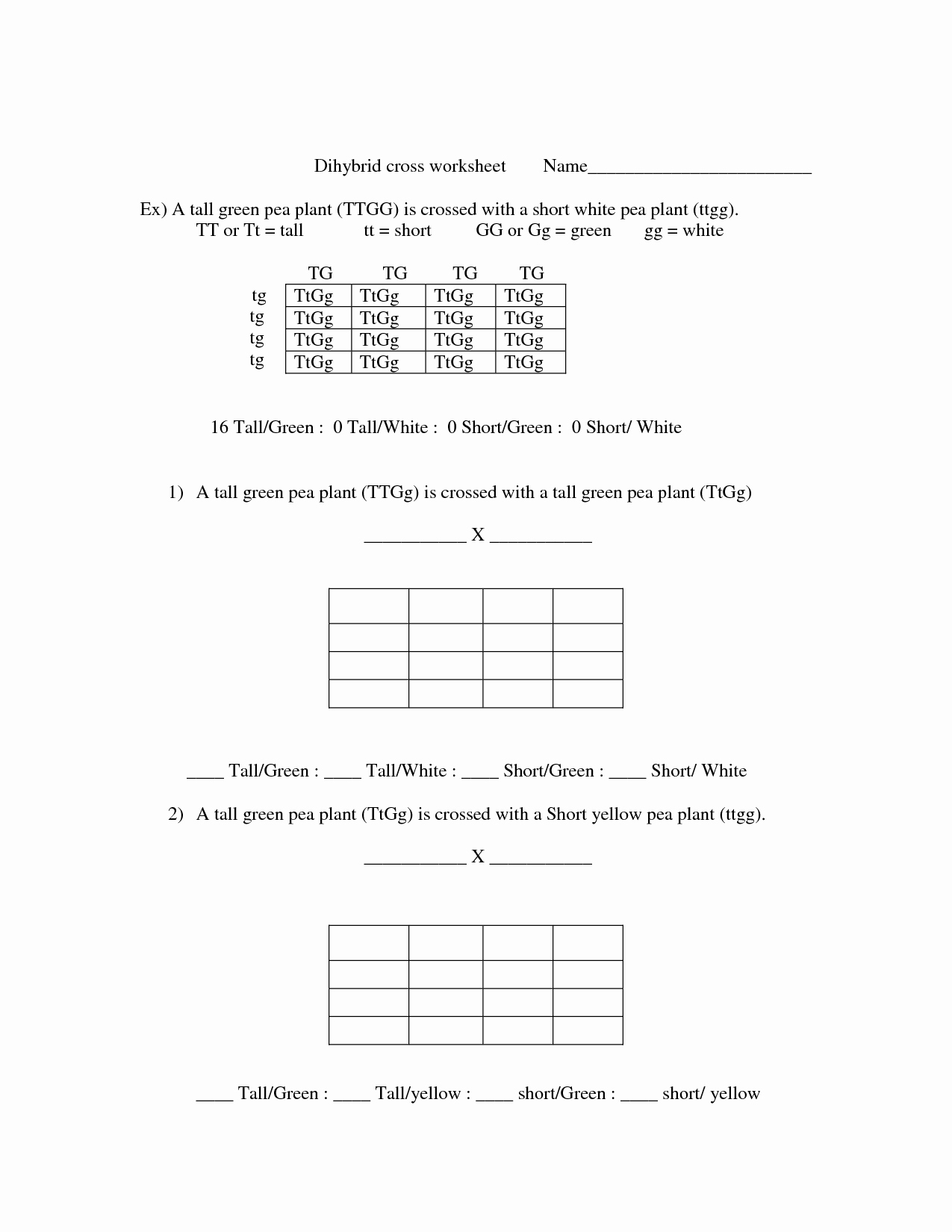 Dihybrid Cross Worksheet Answers Inspirational 17 Best Of Cross Addiction Worksheet Drug