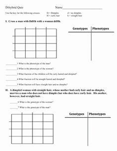 Dihybrid Cross Worksheet Answers Luxury Monohybrid Cross Worksheet Genetics Practice Problems
