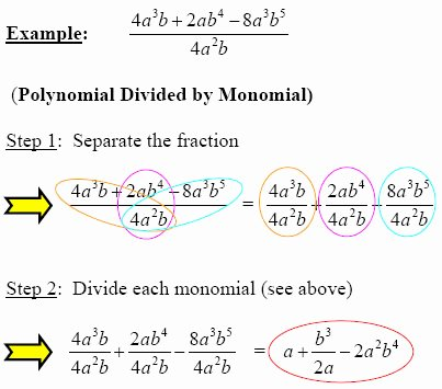 Dividing Polynomials by Monomials Worksheet New Make Polynomial Division Simple with these Steps From Gradea