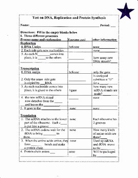 Dna and Replication Worksheet Unique Dna Replication and Protein Synthesis Worksheet Test