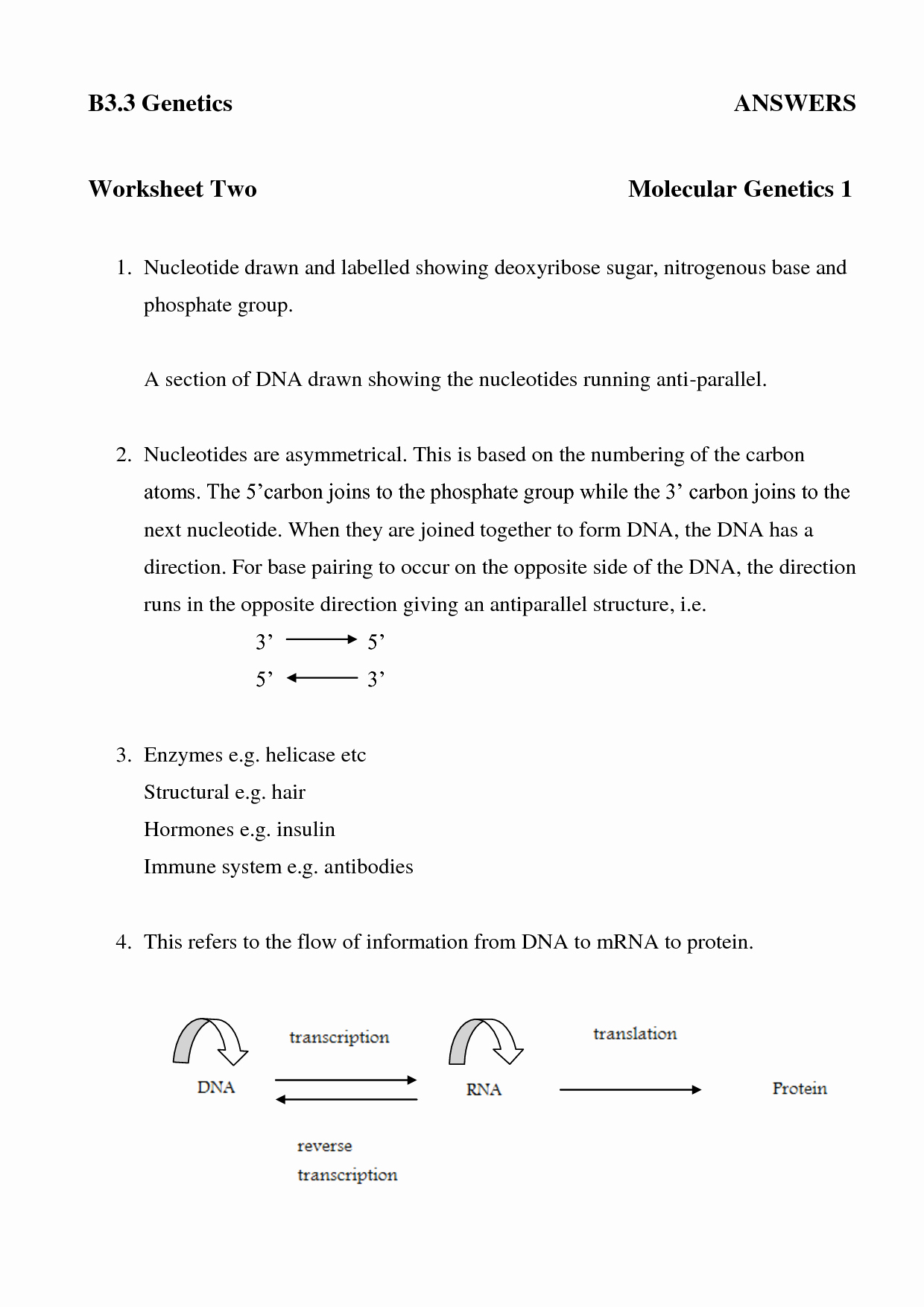 Dna and Rna Worksheet Answers Lovely 16 Best Of Dna and Rna Protein Synthesis Worksheet