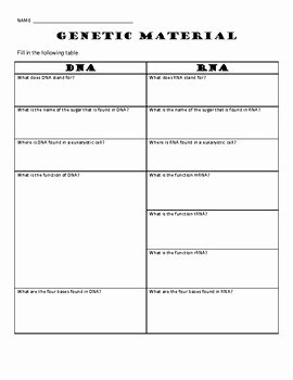 Dna and Rna Worksheet Answers Lovely Genetics Worksheet Dna and Rna Graphic organizer by