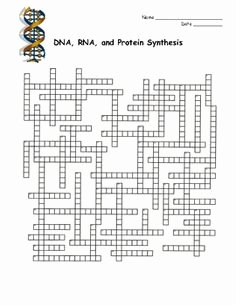 Dna and Rna Worksheet Fresh Cellular Respiration Crossword Puzzles