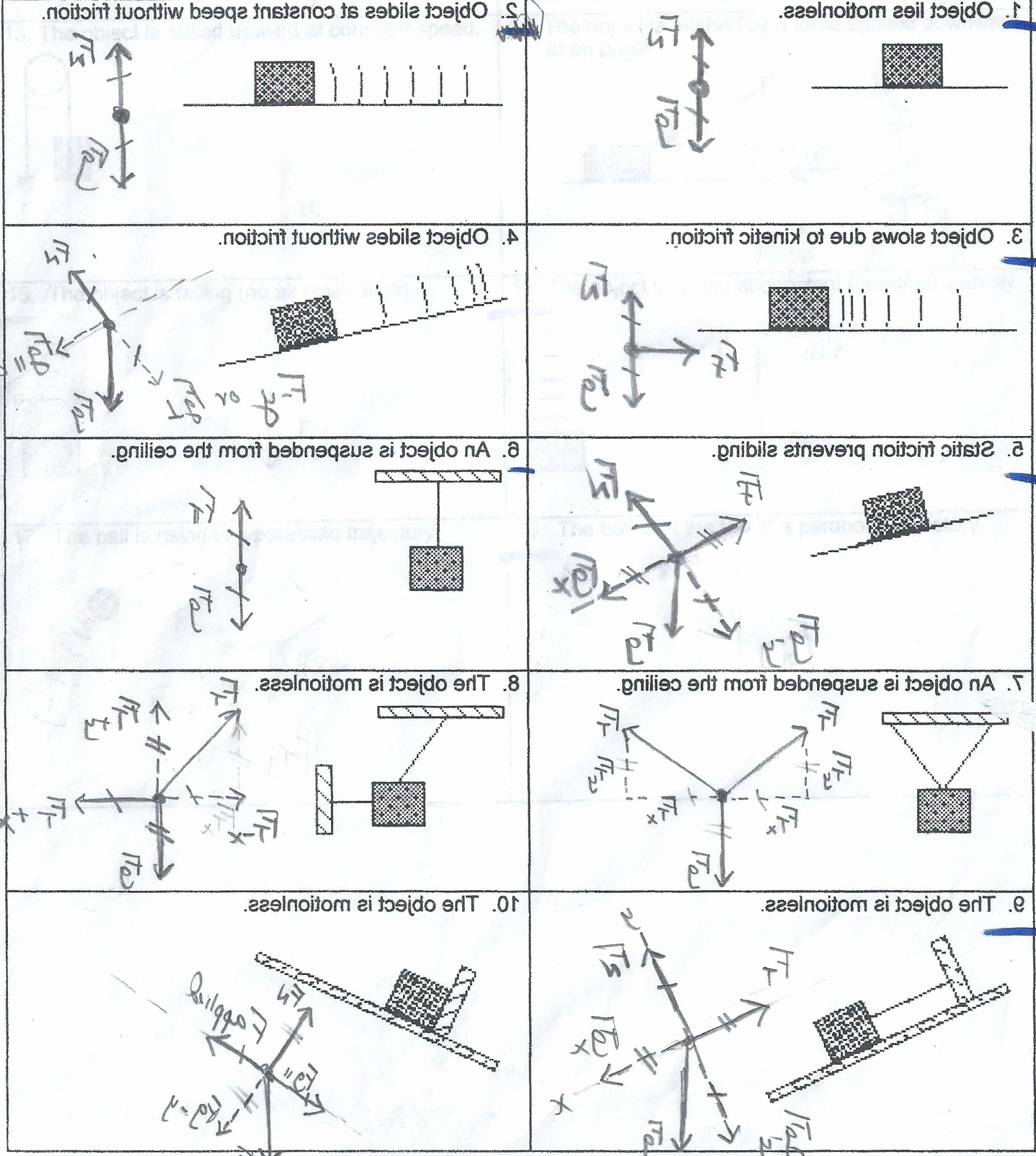 Dna Base Pairing Worksheet Answers Lovely Dna Base Pairing Worksheet Answer Key Worksheet Idea