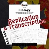 Dna Base Pairing Worksheet Unique Dna Replication Worksheet Teaching Resources