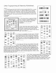 Dna Fingerprinting Worksheet Answers Inspirational Dnangerprintingsheet Name Date Period Dna
