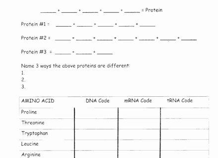 Dna Fingerprinting Worksheet Answers Unique Dna Fingerprinting Worksheet Answers Dna Activity Related