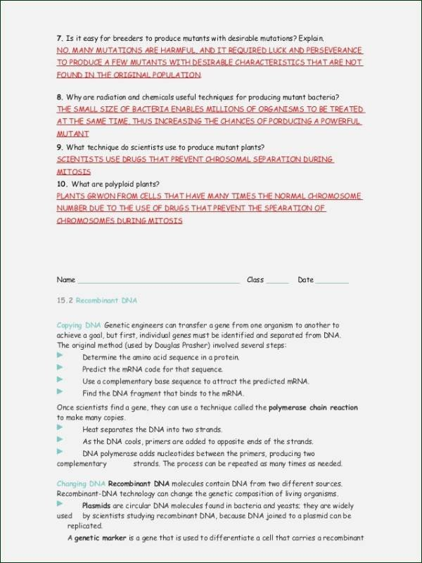 Dna Mutation Practice Worksheet Answers Beautiful Dna Mutations Practice Worksheet Answers
