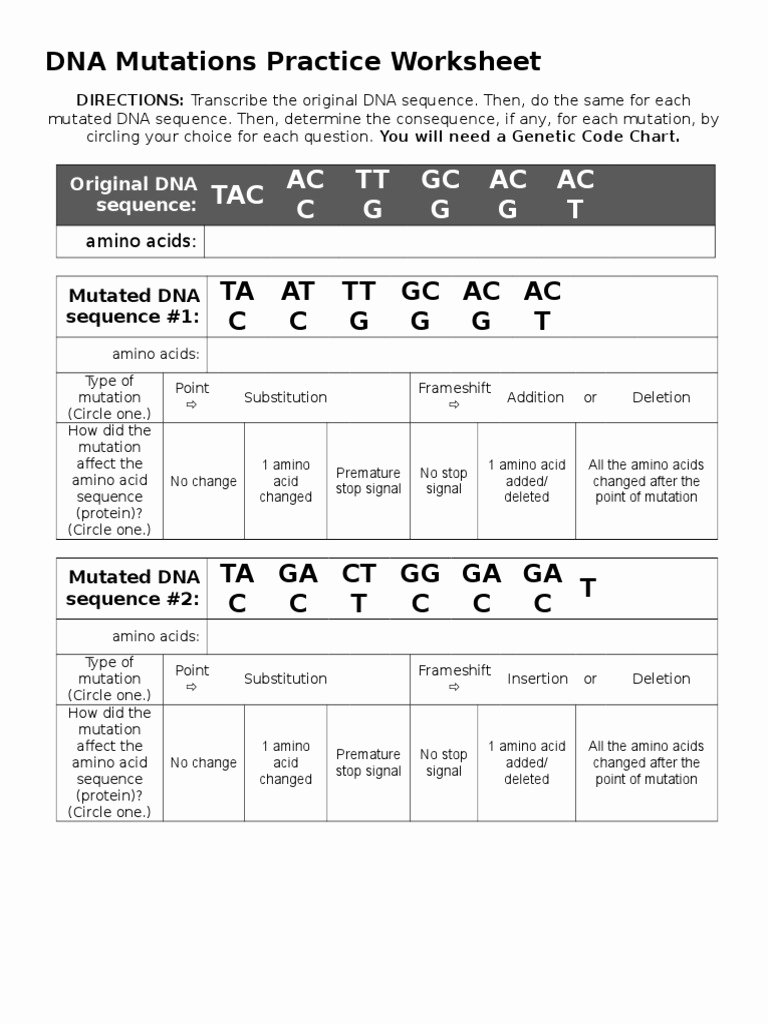 Dna Mutation Practice Worksheet Answers Elegant Dna Mutations Practice Worksheet Point Mutation