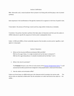 Dna Mutation Practice Worksheet Answers Lovely Dna Mutations Practice Worksheet