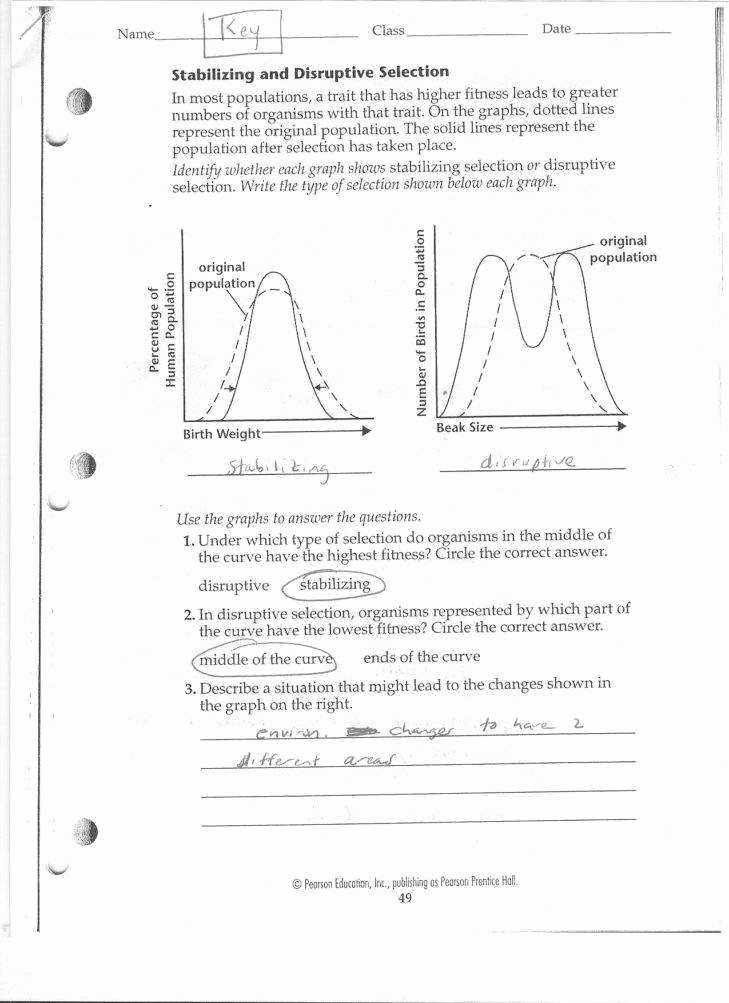 Dna Mutations Practice Worksheet Answers Awesome Gene Mutations Worksheet