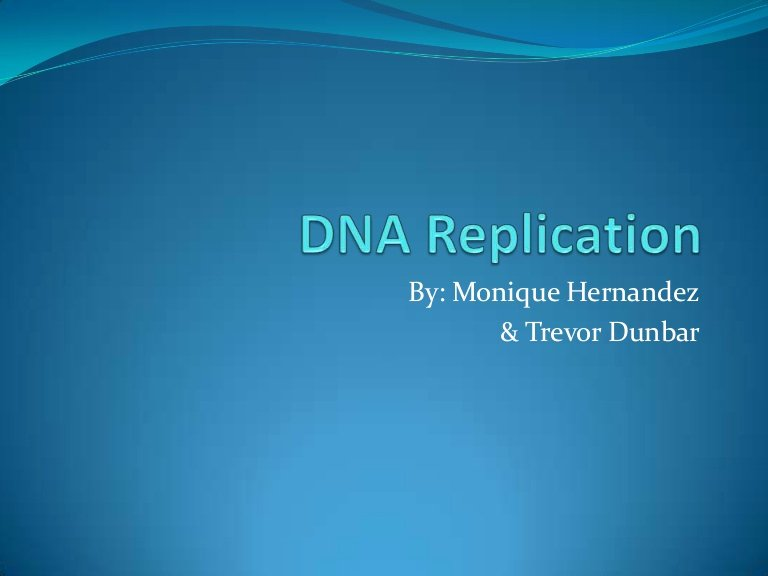 Dna Replication Review Worksheet Lovely Dna Replication Review for Matching Worksheet Final