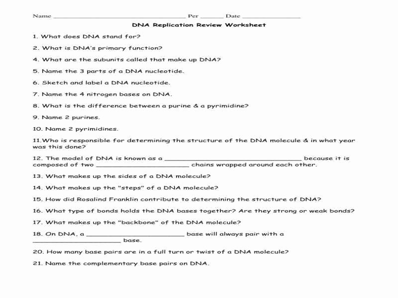 Dna Replication Worksheet Answer Key Fresh Dna Worksheet