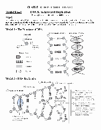 Dna Structure Worksheet Answer Key Elegant 12 Best Of 3rd Grade Math Division Worksheets
