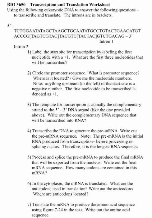 Dna Transcription and Translation Worksheet Awesome Transcription and Translation Worksheet