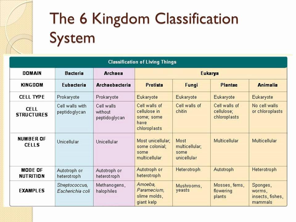 Domains and Kingdoms Worksheet Elegant Download atlas atherosclerosis Risk Factors and Treatment