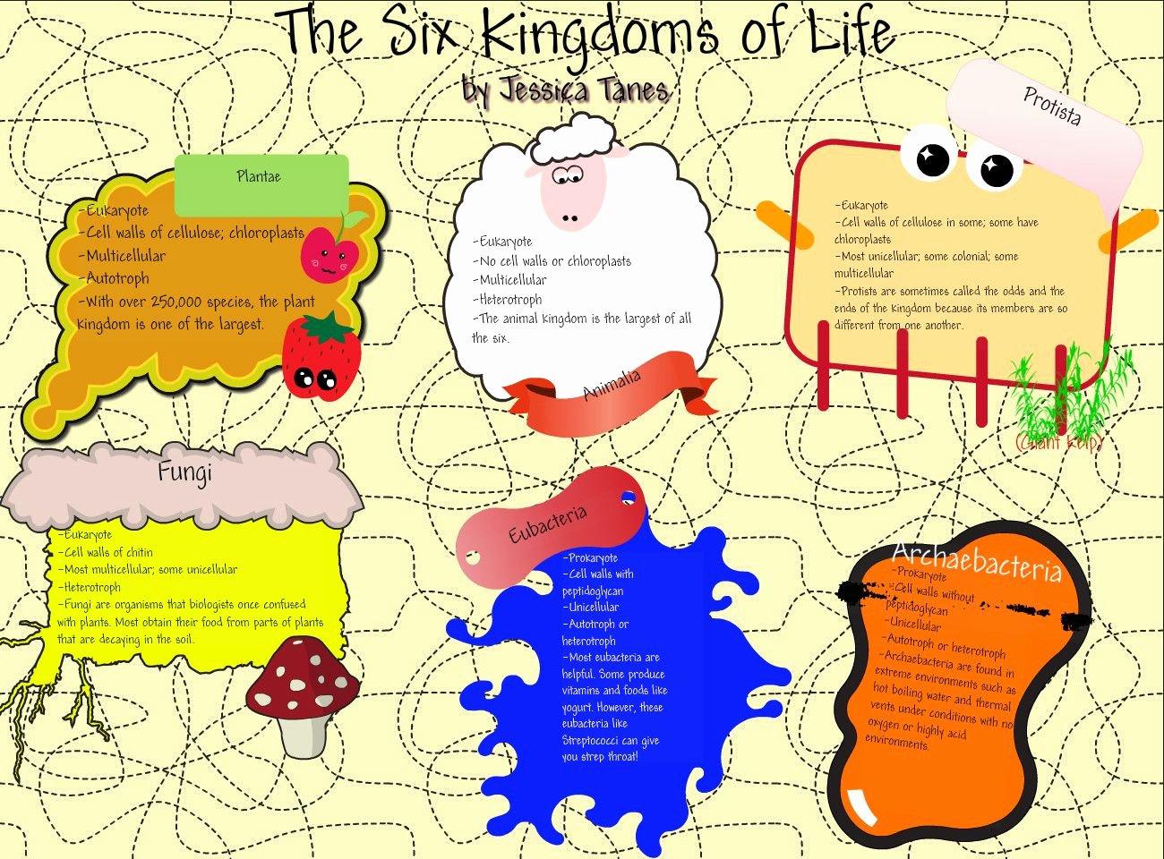 Domains and Kingdoms Worksheet Elegant Science Five Kingdoms Worksheets