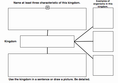 Domains and Kingdoms Worksheet Fresh the Kingdoms Of Life