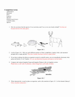 Domains and Kingdoms Worksheet Inspirational Domain and Kingdom Worksheet 1