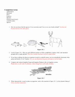 Domains and Kingdoms Worksheet Inspirational Domain and Kingdom Worksheet 1