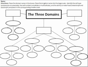 Domains and Kingdoms Worksheet New Domain and Kingdom Classification Concept Map and Graphic