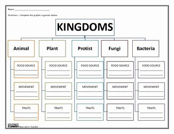 Domains and Kingdoms Worksheet New Kingdoms Graphic organizer Worksheets