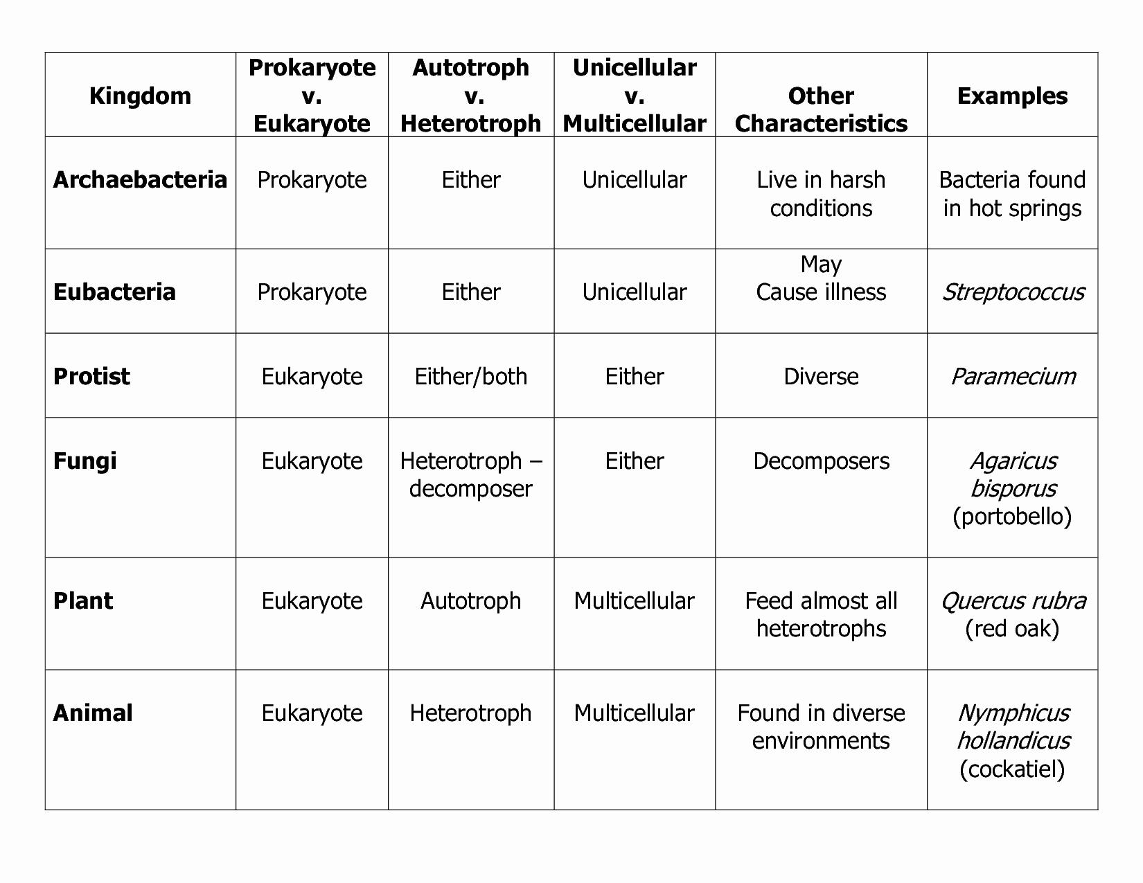 Domains and Kingdoms Worksheet New Six Kingdoms Of Life Worksheet
