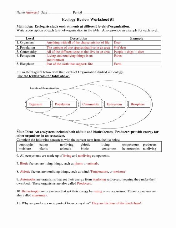 Ecological Pyramids Worksheet Answer Key Awesome Six Levels Of Ecology