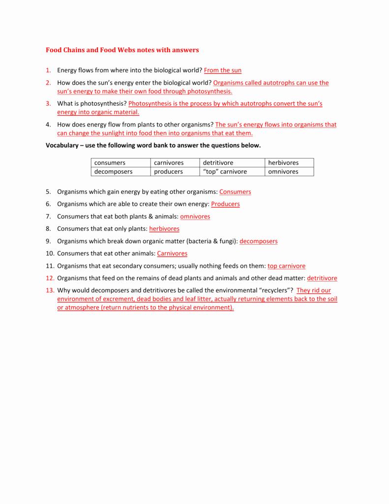 Ecological Pyramids Worksheet Answer Key Fresh Ecological Pyramids Notes with Answers