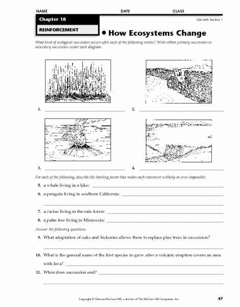 Ecological Succession Worksheet Answer Key Best Of Ecological Succession Worksheet
