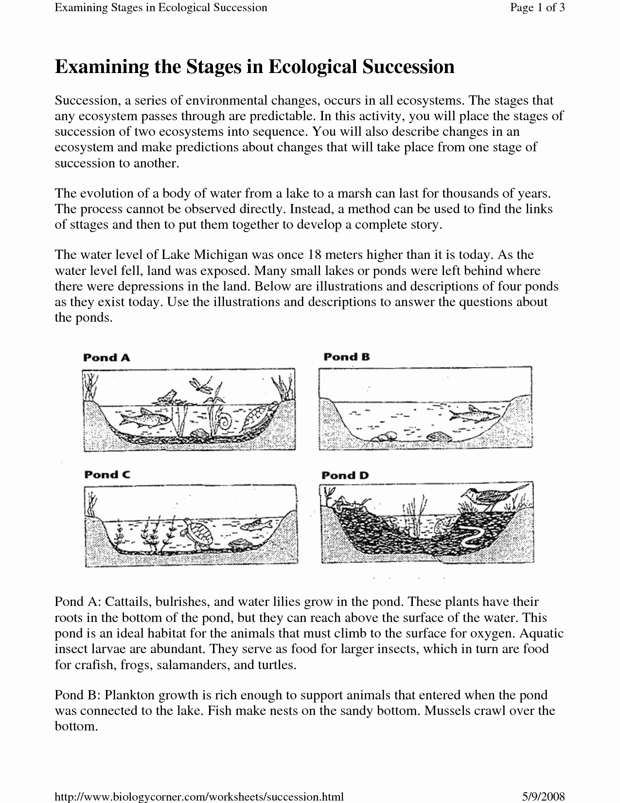 Ecological Succession Worksheet Answers Lovely 19 Best Of Ecosystem Worksheet Answer Key