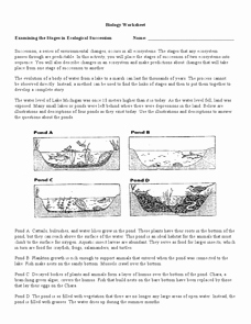 Ecological Succession Worksheet Answers Lovely Examining the Stages Of Ecological Succession 9th 12th