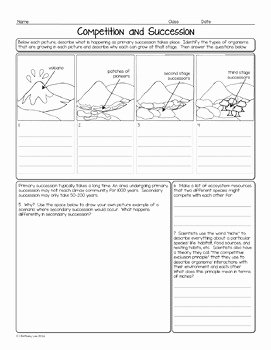 Ecological Succession Worksheet Answers Lovely Petition and Succession Biology Homework Worksheet by