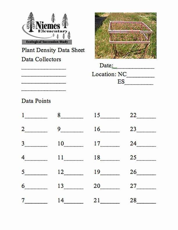 Ecological Succession Worksheet High School Awesome Ecological Succession Worksheet