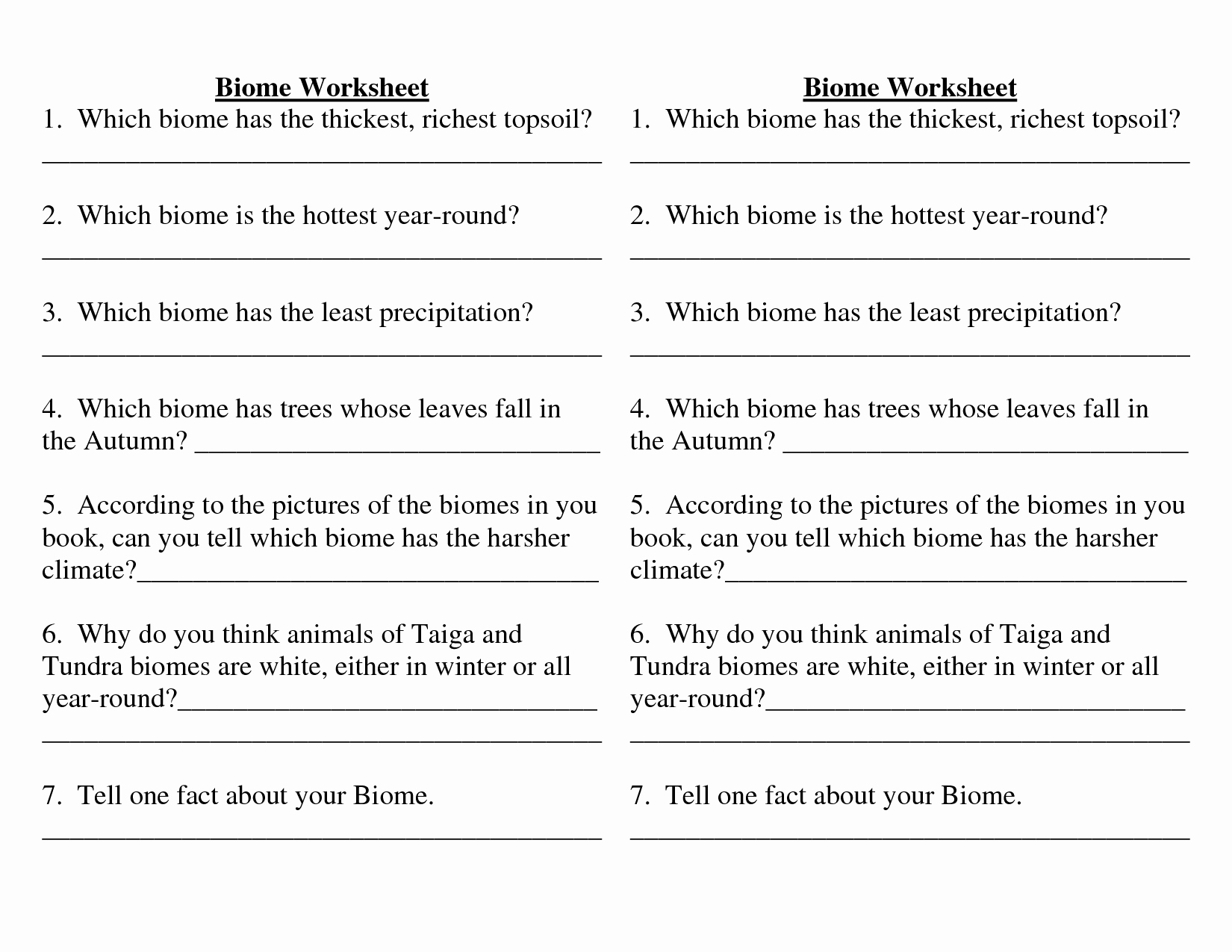 Ecological Succession Worksheet High School Fresh 11 Best Of Ecosystem Worksheets for Middle School