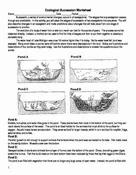 Ecological Succession Worksheet High School New Ecological Succession Worksheet Answers original 1