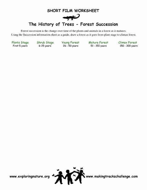 Ecological Succession Worksheet High School New Ecological Succession Worksheet