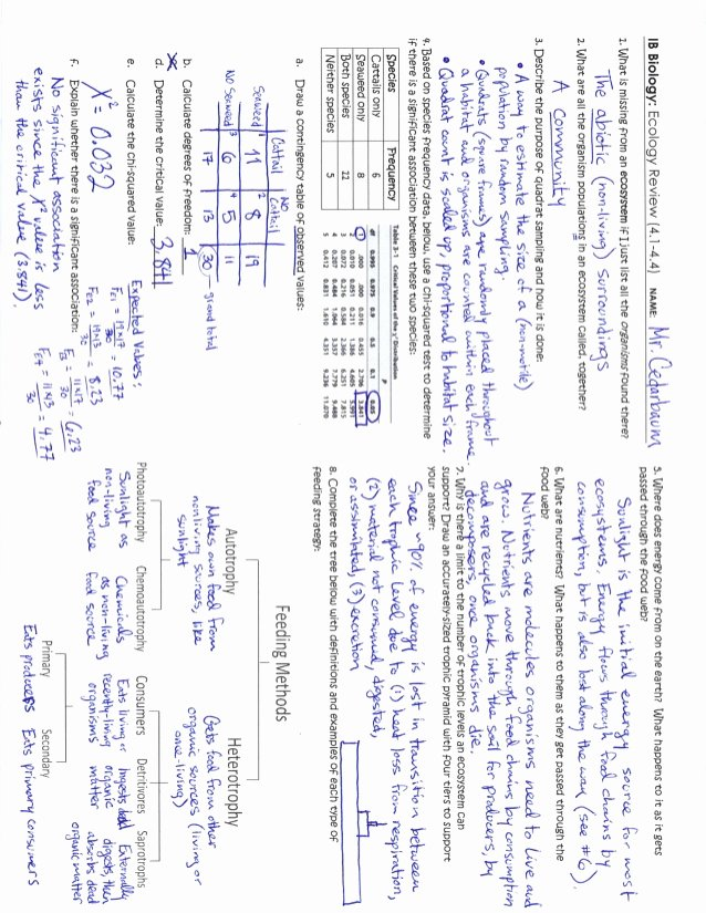 Ecology Review Worksheet 1 Best Of Ecology Review Key 4 1 4 4